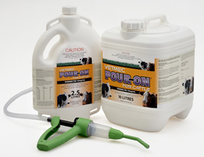 Cattle pour-on and sheep drench with Abamectin against liver fluke